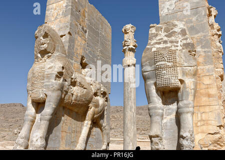 Stiere am Tor aller Nationen, Persepolis, Persepolis, Iran, Naher Osten Stockbild