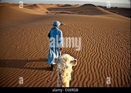 Nomad mit Kamel, Wüste Sahara Stockbild