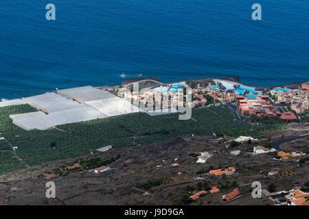 Bananenplantagen, El Remo, Insel La Palma, Kanarische Inseln, Spanien, Atlantik, Europa Stockbild