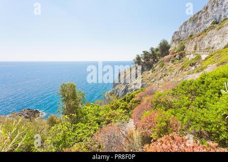 Apulien Leuca, Italien, Grotte von ciolo - Vegetation an der Küste von Grotte Ciolo Stockbild