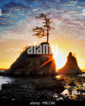 Die drei Gnaden und den Sonnenuntergang. Tillamook Bay. Oregon Stockbild