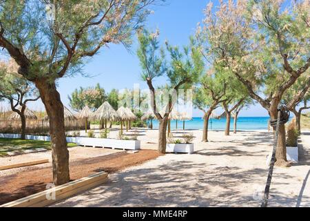 Spiaggia Terme, Apulien, Italien - Bäume und Sonnenschirme am Strand Stockbild