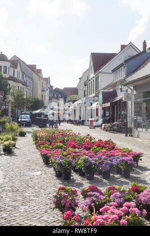 Fußgängerzone Obernstrasse mit Blumenmarkt, Achim, Niedersachsen, Deutschland, Europa ich Obernstrasse Fussgängerzone mit Blumenmarkt, Achim, Niedersach Stockbild