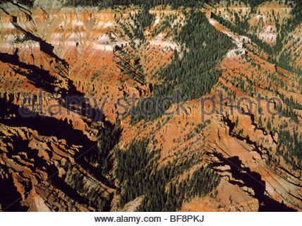Cedar Breaks National Monument (Antenne), Utah Stockbild