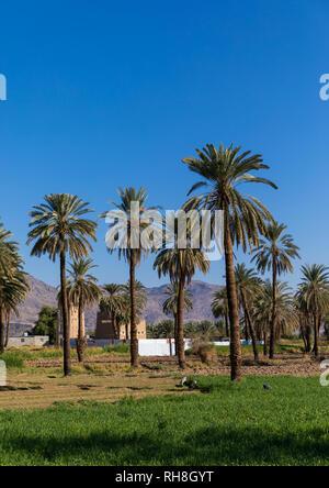 Traditionelles altes Lehmhaus, Najran Provinz Najran, Saudi-Arabien Stockbild
