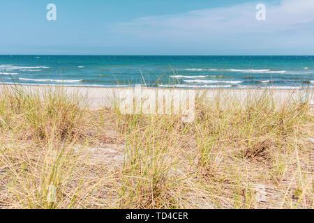 Der Blick über die Dünenlandschaft der Ostsee bei schönem Wetter Stockbild