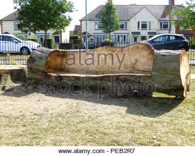 Großen Baum in Market Harborough Stockbild