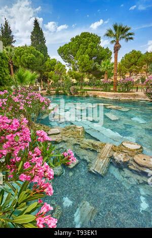 Cleopatra Pool mit blühenden Blumen, Pamukkale, Türkei Stockbild
