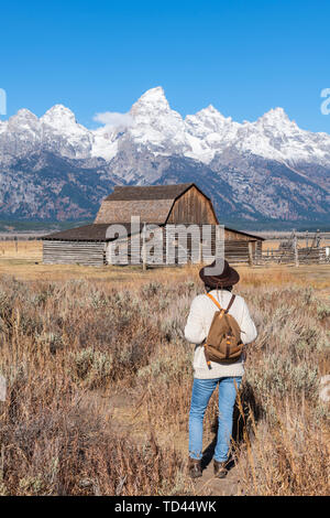 Mormon Zeile und Teton Range, Grand Teton National Park, Wyoming, Vereinigte Staaten von Amerika, Nordamerika Stockbild