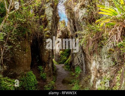 Felsenlabyrinth, Asilo de la Paz, Hochland der Insel Floreana (Charles), Galapagos, UNESCO-Weltkulturerbe, Ecuador, Südamerika Stockbild