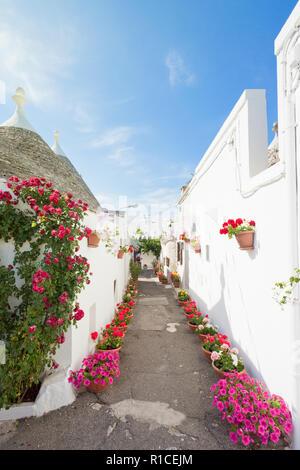 Alberobello, Apulien, Italien - die Straßen voller Blumen innerhalb der traditionellen Gebäude Stockbild