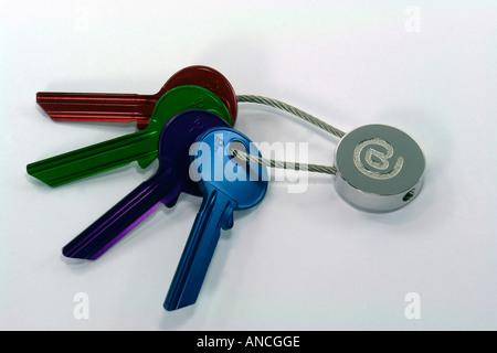 Internet-Schlüssel Stockbild