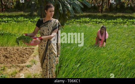 Ländliche Frau, die Blattgemüse in einem Kunststoff Gold Pan arbeiten in der Landwirtschaft Feld zusammen mit ihrer Tochter an einem sonnigen Tag. Stockbild