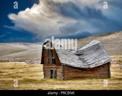 Die Scheune mit Gewitterwolken gefallen. Montana. Stockbild