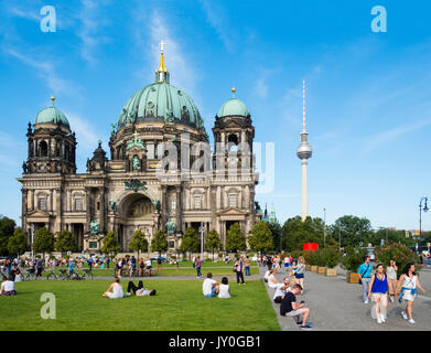 Blick auf den Berliner Dom (Berliner Dom) und Lustgarten Platz im Sommer in Mitte, Berlin, Deutschland Stockbild