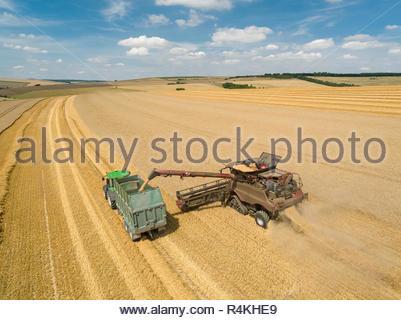 Ernte Antenne Landschaft des Mähdreschers schneiden Sommer Weizenfeld Ernte und Traktoren Anhänger auf der Farm Stockbild