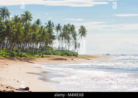 Sri Lanka, Asien, Rathgama-schönen Naturstrand Landschaft von Rajgama aka Rathgama Stockbild