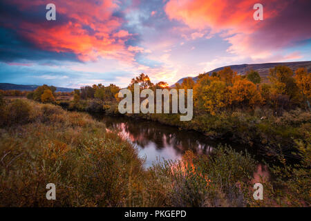 Dovrefjell, Norwegen, September 14th, 2018. Herbst Farben bei Fokstumyra Nature Reserve, Dovre, Norwegen. Credit: öyvind Martinsen/Alamy leben Nachrichten Stockbild