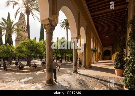 Die Große Moschee (Kathedrale Unserer Lieben Frau von der Himmelfahrt) (Mezquita) von Córdoba, UNESCO-Weltkulturerbe, Cordoba, Andalusien, Spanien, Europa Stockbild