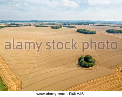 Antenne Landschaft des Sommers Bauernhof Weizen und Gerste Feld ernten Stockbild