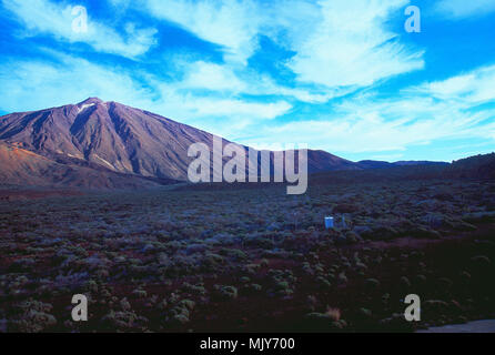 Nationalpark Teide, Teneriffa, Kanarische Inseln, Spanien. Stockbild