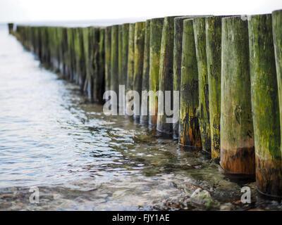 Holzpfosten im Meer Stockbild