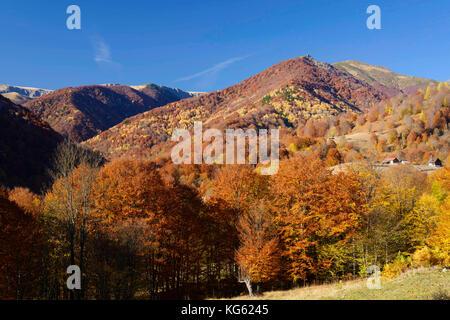 Vlasia und carbunele Täler - domogled - valea cernei Nationalpark/Rumänien: Urwald und Sömmerungsweiden Stockbild