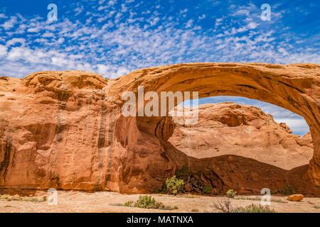 Pritchett Arch, hinter den Felsen WSA, in der Nähe von Moab, Utah, Colorado River Stockbild