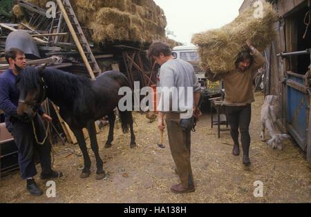 Pferd Hof, Hackney 1980s London Totters rag und Knochen Mann. rag n Knochen, HOMER SYKES Stockbild