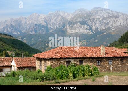 Die traditionellen, aus Stein gebauten Cottages mit Terra Cotta Tondachziegel, San Pedro de Bedoya Dorf, Picos de Europa, Kantabrien, Spanien, August. Stockbild