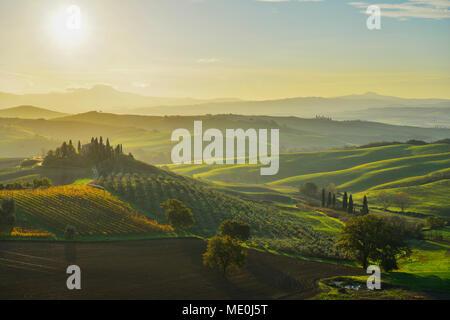Einen herrlichen Überblick über die toskanische Landschaft mit Bauernhaus bei Sonnenuntergang in San Quirico d'Orcia in der Val d'Orcia in Siena, Italien Stockbild