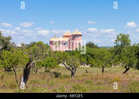 Portugal - Algarve - Landwirtschaft - Europa Stockbild