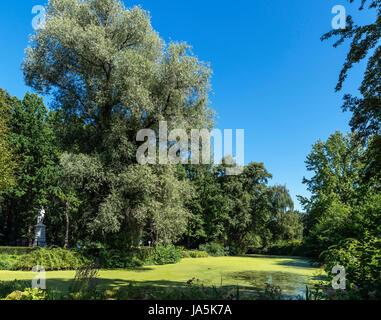 Tiergartengewässer aus Luiseninsel, Tiergarten, Berlin, Deutschland Stockbild