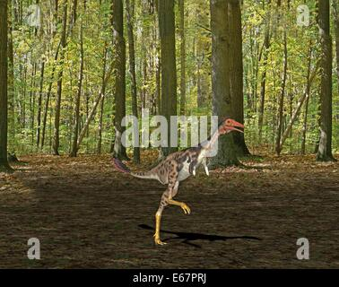 Dinosaurier Mononykus / Dinosaurier Mononykus Stockbild