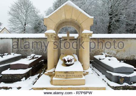 Frankreich, Seine-et-Marne, Bois le Roi, Architekt und Maler Louis Perin's Grab auf dem Friedhof Stockbild