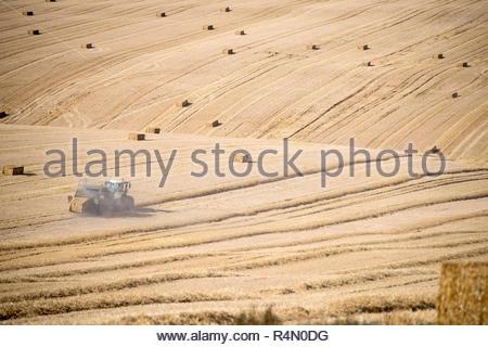 Traktor und Ballenpresse Strohballen in Felder nach dem Sommer Weizenernte auf der Farm Stockbild