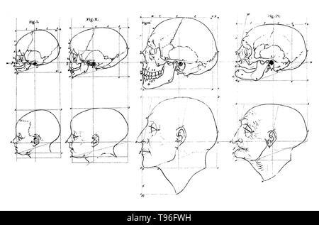 Petrus Camper (Mai 11, 1722 - April 7, 1789) war ein niederländischer Arzt, Anatom, Physiologe, Hebamme, Zoologe, Anthropologe, Paläontologe und Naturforscher. Auf der ersten Leinwand den Kopf eines Kindes, der Kopf eines erwachsenen Mannes, und der Kopf eines alten Mannes waren mit ihren Schädel über Ihnen gezeigt, die alle im Profil. Gesichtsbehandlung Winkel bezieht sich auf den Inhalt der beiden Vorlesungen von Petrus Camper am 1. August und 8. im Jahr 1770 an die Amsterdamer Zeichnung Akademie. Stockbild