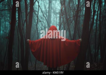 Nebligen Wald und Rot vermummte Person Stockbild