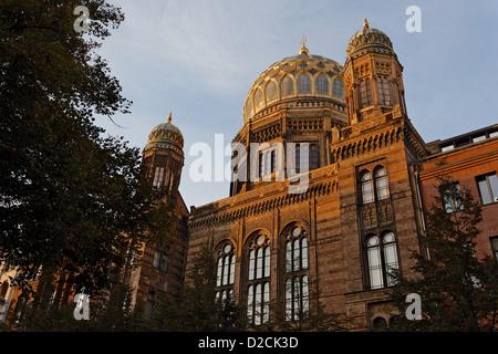 Berliner Synagoge im Abendlicht Stockbild