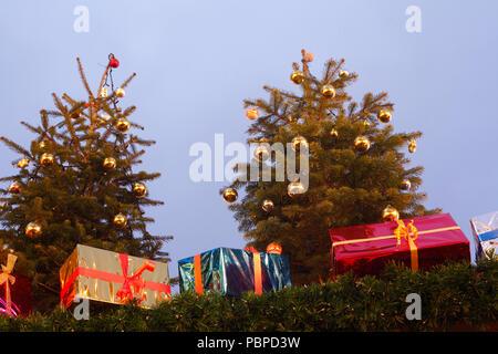 Beleuchtete Tannenbäume und Weihnachten, Weihnachten Dekoration bei Dämmerung, Bremen, Deutschland, Europa ich Beleuchtete Tannenbäume und Weihnachtspakete, Stockbild