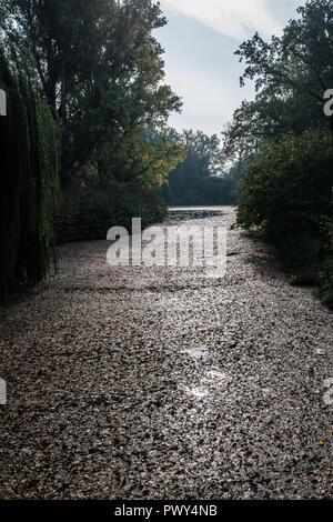 Berlin, Deutschland. Okt, 2018 18. Bedeckt mit Blätter ist ein Teich in den Zoo. Credit: Paul Zinken/dpa/ZB/dpa/Alamy leben Nachrichten Stockbild
