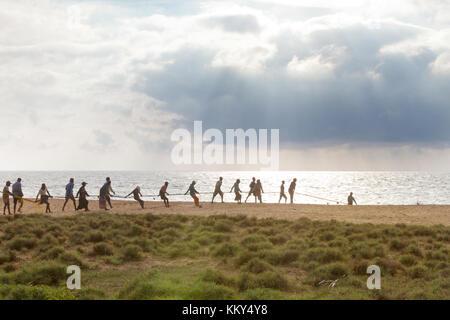 Teamarbeit bei thoduwawa Strand, Sri Lanka, Asien Stockbild
