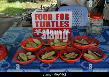 Futter für Wasserschildkröten Stockbild