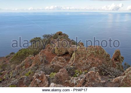 Ruhigen Gewässer des Atlantischen Ozeans und rauen vulkanischen Felsen mit sukkulenten Pflanzen, Anagagebirge im Nordosten von Teneriffa Kanarische Inseln Spanien. Stockbild