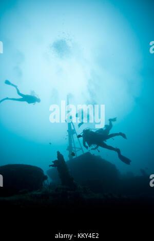 Mauritius - Afrika - Unterwasser team Stockbild