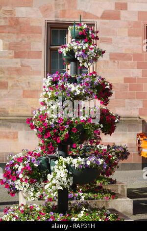 Blumen vor dem Rathaus, Saarbrücken, Saarland, Deutschland Stockbild