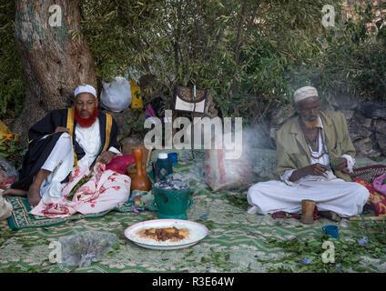 Harari hombres mascar khat durante una celebración sufi, Región Harari, Harar, Etiopía Imagen De Stock