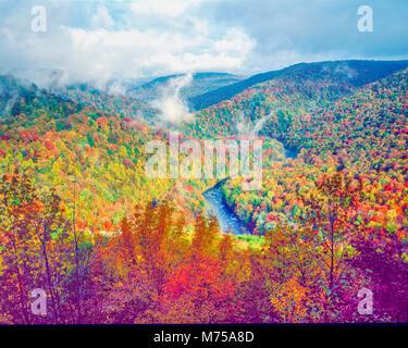 Bosque de otoño en el Fin del Mundo State Park, Pennsylvania LOyalsock Canyon montañas Apalaches Imagen De Stock