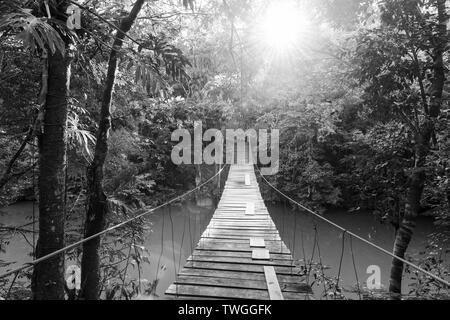 Pasarela de madera sobre el río tranquilo en bosque en blanco y negro impresionante Imagen De Stock