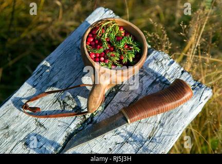 La cuchilla y la taza con bayas Imagen De Stock